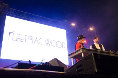 Fleetmac Wood @ Falls Music and Arts Festival - Mt Duneed Estate, 15/16