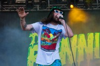 The Bennies at Falls Festival
