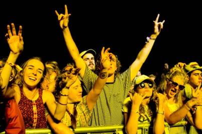 Wavves - Falls Festival