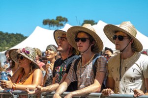 Holy Holy's crowd @ Falls Festival - Mt Duneed, (31.12.15)